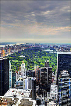 View From the Top of The Rock Rockefeller Center NYC II by Wayne Moran