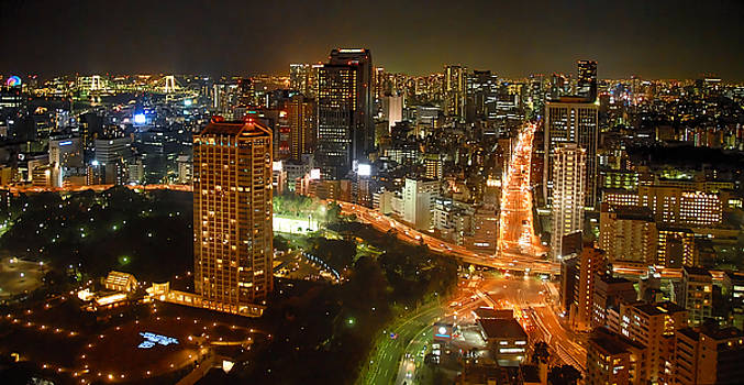 View from Tokyo Tower by Maggie Magee Molino