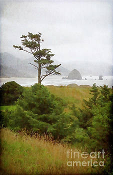 View of Cannon Beach in the fog by Maria Janicki