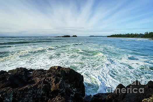 View of Chesterman Beach by Carrie Cole