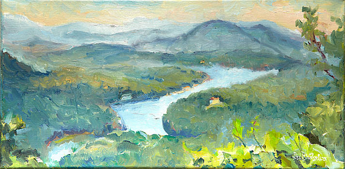 View of Lake Lure from Chimney Rock by Lisa Blackshear