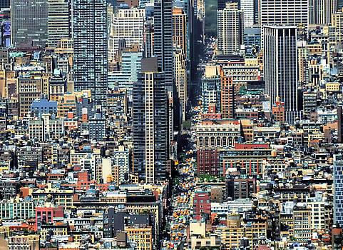 Nina Bradica - View of Manhattan-1