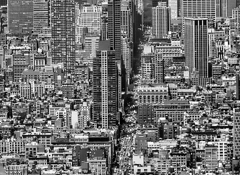Nina Bradica - View of Manhattan-2