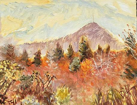 View of Mount Pisgah NC by Lisa Blackshear