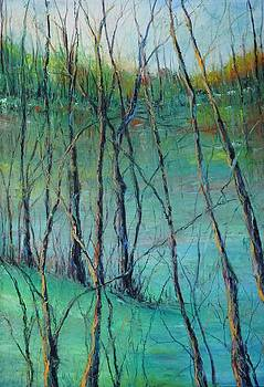 View of Nature's Canvas by Robin Miller-Bookhout