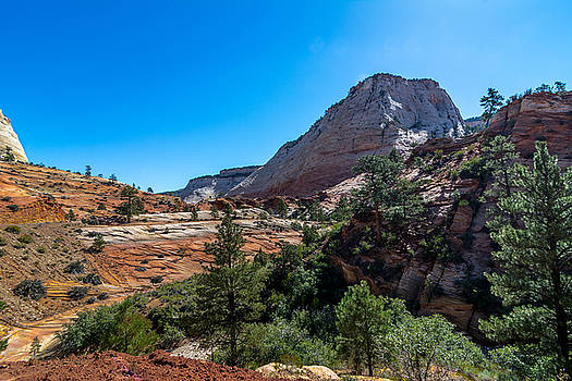 View Of Zion by Paul Barkevich