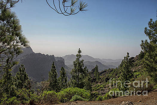View on Gran Canaria by Patricia Hofmeester