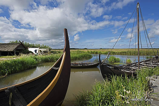 Viking Boats by Robert Lacy