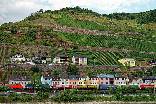 Village and Vineyards by Sally Weigand