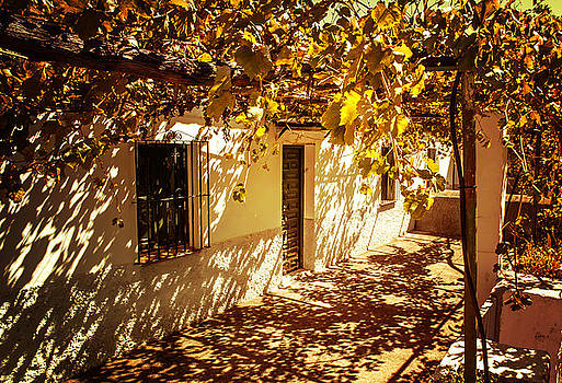 Jenny Rainbow - Vine-Covered Patio. Andalusia. Spain