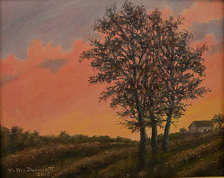 Vineyard Sundown by Kathleen McDermott
