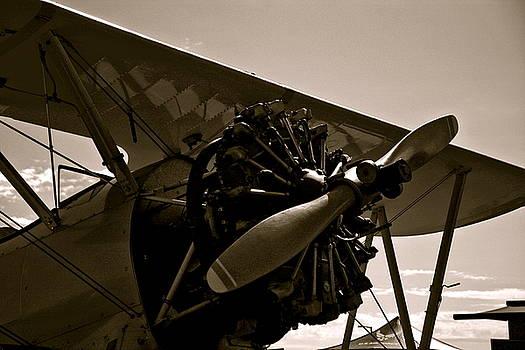 Vintage Bi Plane by Amy McDaniel