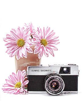 Vintage Camera 2 by Vicki McLead