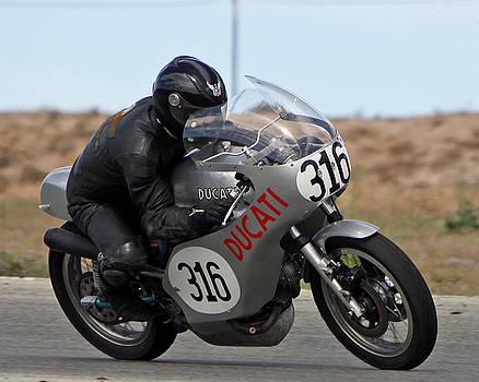 Vintage Ducati by Shoal Hollingsworth