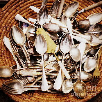 Vintage Flatware Collection  by Lainie Wrightson