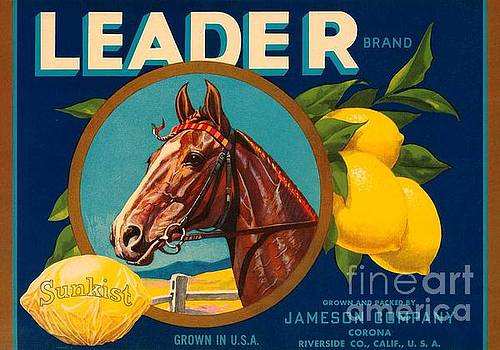 REPRODUCTION - Vintage Fruit Label