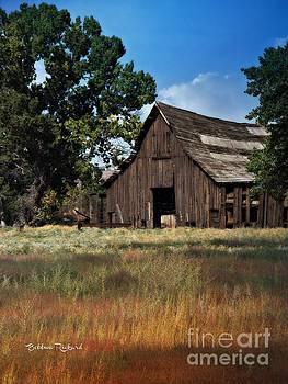 Vintage Nevada Barn by Bobbee Rickard