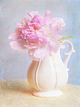Vintage Pink Peony In Vase by Daphne Sampson