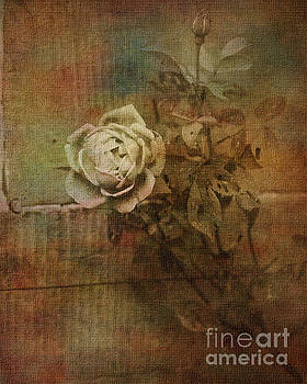 Vintage Rose by Liz Alderdice