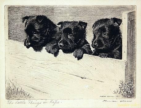 Vintage Three curious dogs by Allen Beilschmidt