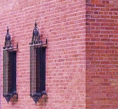 Vintage Window Grates 3 by Anna Villarreal Garbis