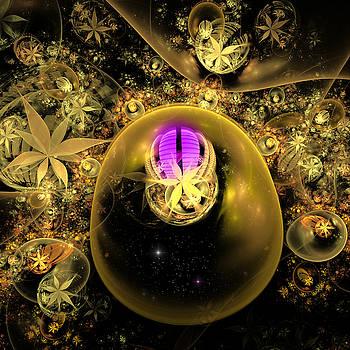 Violet fireflies area. by Tautvydas Davainis