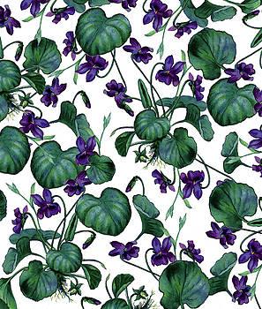 Violets by Uma Gokhale