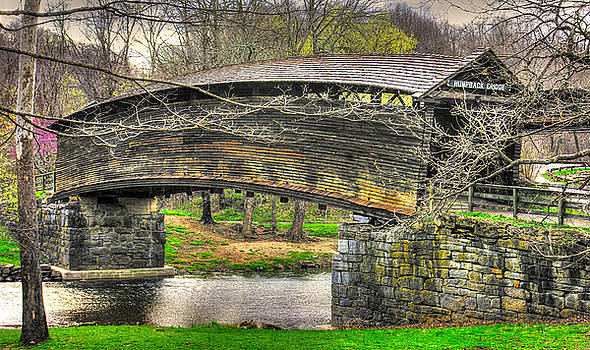 Virginia Country Roads - Humpback Covered Bridge Over Dunlap Creek #14A - Spring, Alleghany County by Michael Mazaika