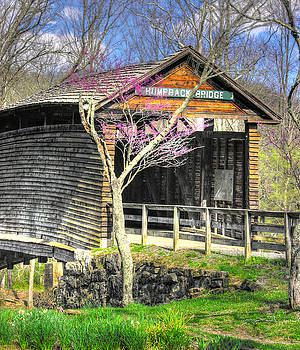 Virginia Country Roads - Humpback Covered Bridge Over Dunlap Creek No. 4B - Spring, Alleghany County by Michael Mazaika