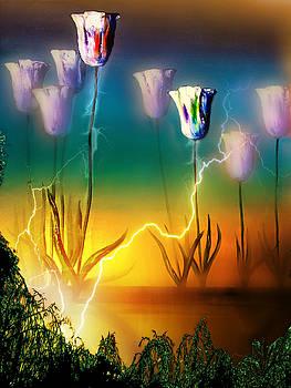Vital Energy by Vincent Marguerit