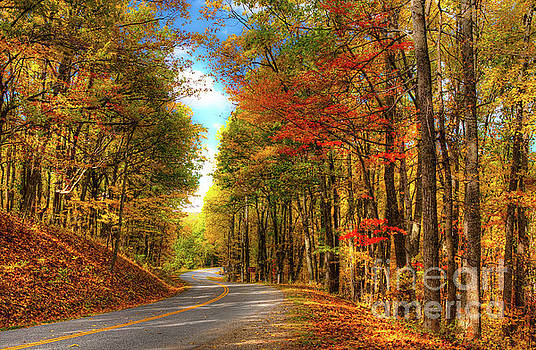Vivid Autumn in the Blue Ridge Mountains by Dan Carmichael