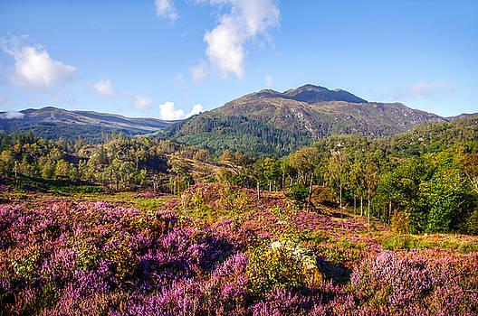 Jenny Rainbow - Vivid Glimpses of Autumn in Trossachs