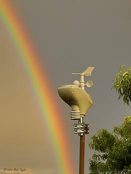 Vivid Rainbow Weather by Matt Taylor