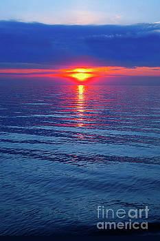 Vivid Sunset by Ginny Gaura