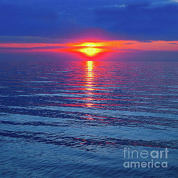 Vivid Sunset - Square Format by Ginny Gaura