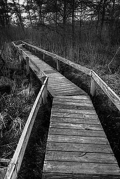 Volo Bog Boardwalk by Steve Gadomski