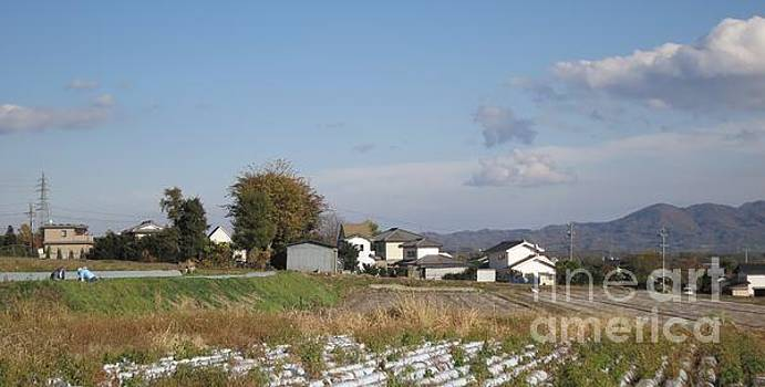 W053 by Taikan Nishimoto
