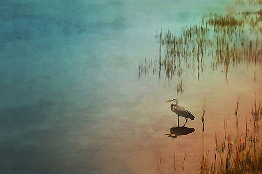 Wading in the Grasses by Stella Oliver