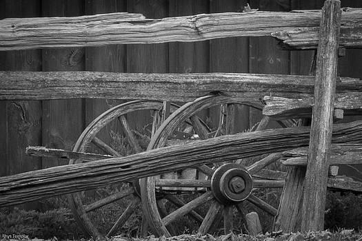 Wagon by Rhys Templar