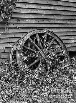 Wagon Wheels by Debbie Green