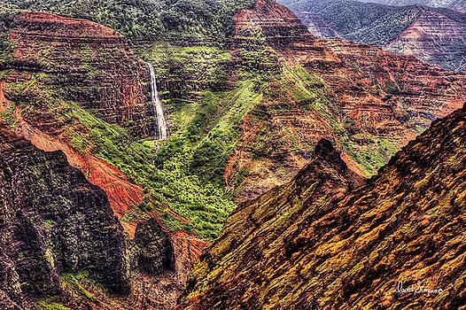 Waimea Canyon II by David Simpson