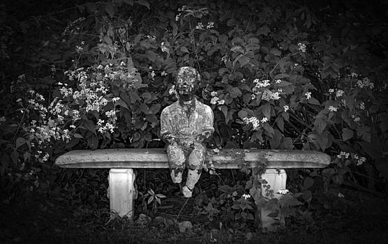Waiting By The Garden by Ray Congrove