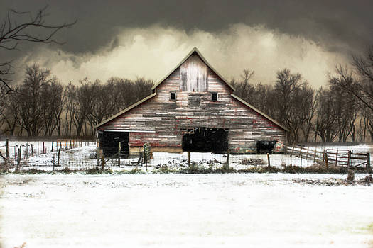 Waiting for the Storm to Pass by Julie Hamilton