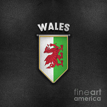 Wales Pennant with high quality leather look by Carsten Reisinger