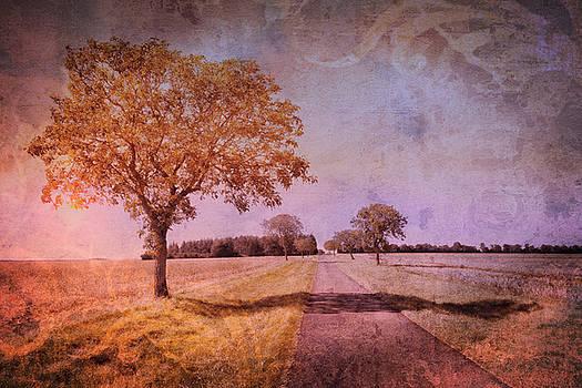 Debra and Dave Vanderlaan - Walk in the Country