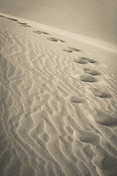 Walk in the Sand by Dan Girard