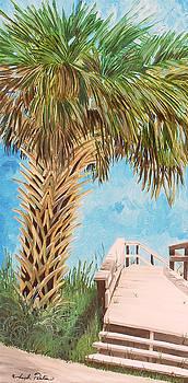 Walk Onto Anna Maria Island Florida by Joseph Palotas