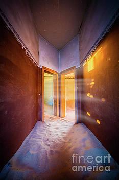 Inge Johnsson - Walk Towards the Light
