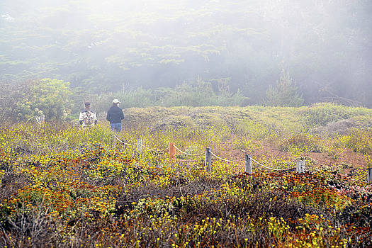 Walk With A Friend On A Foggy Day In Cambria By The Sea by Barbra Snyder
