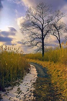 Walk with me by John Rivera